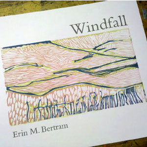 02_windfall